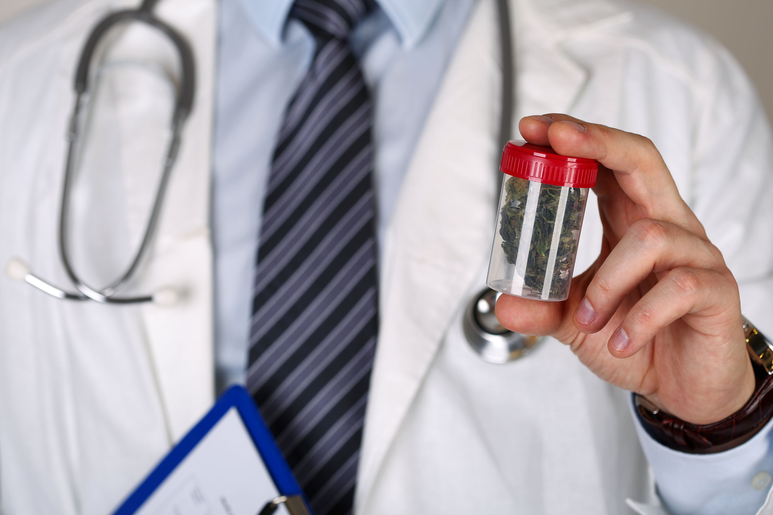 male medicine doctor hand holding and offering to patient medical marijuana in jar.